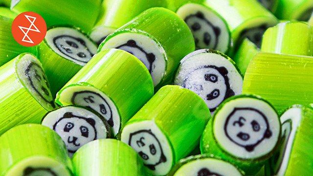 Making Panda Candy